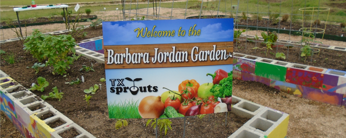 Welcome to the Barbara Jordan Garden